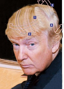 trump_hair