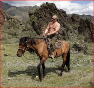 putin-shirtless1